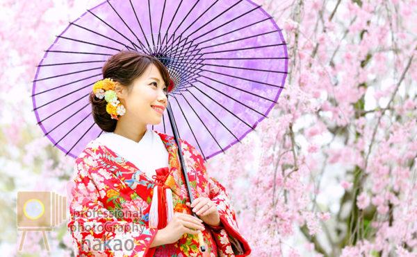 桜の開花時期にあわせたロケーション撮影が人気! 京都大学