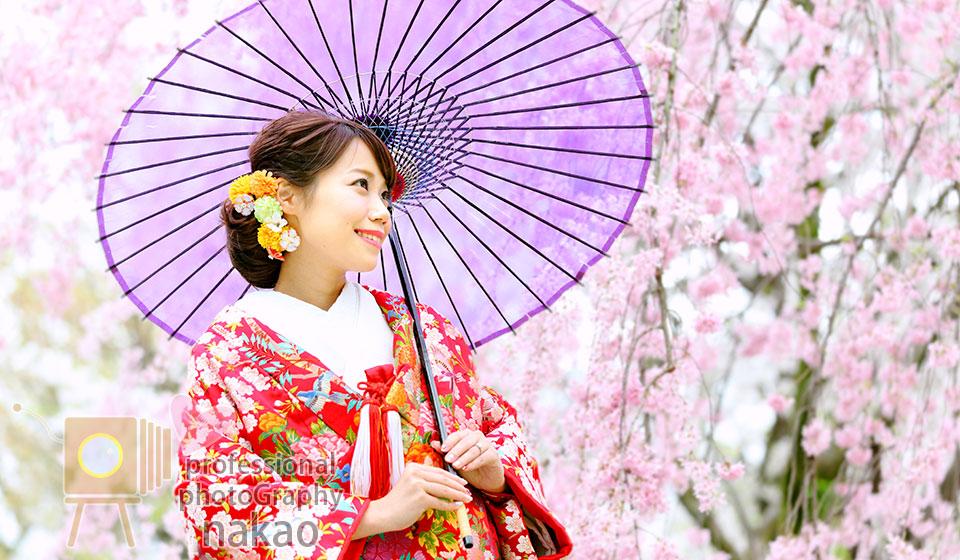 桜の開花時期にあわせたロケーション撮影 京都大学